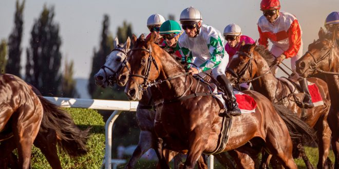 UK and Irish tote launch 'single unified online betting pool'